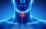 Что нужно знать о паратиреоидном гормоне (ПТГ)