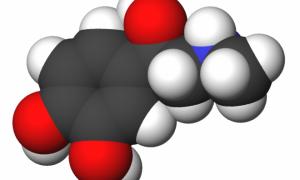 Вопрос №22 — Выработка адреналинна при опьянении