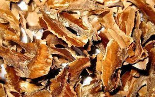 Использование перегородок грецких орехов при болезнях щитовидной железы