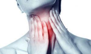 Функции, гормоны и патологии щитовидной железы