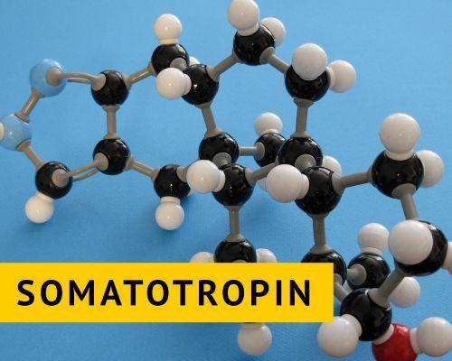 Значение гормона роста и его влияние на организм человека