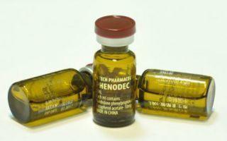 Особенности проведения курса на массу с Нандролоном и Тестостероном энантат