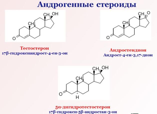 Андрогенные