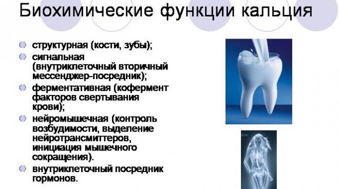 Биохимические функции кальция