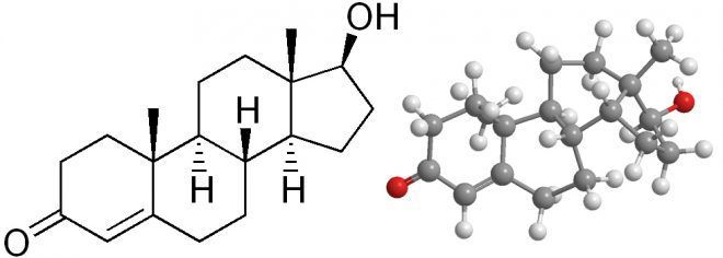 Формы андрогенов