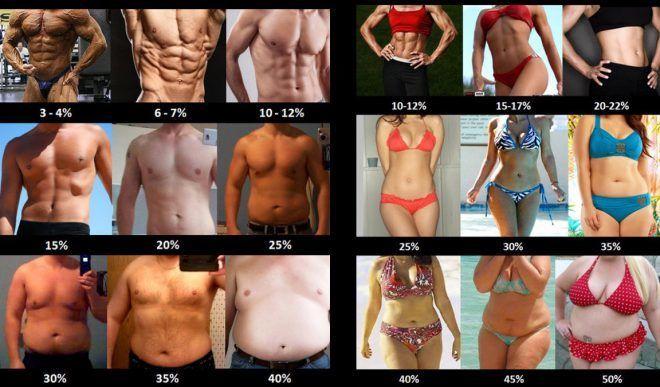 Измерение жира в организме