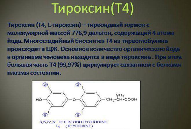 Концентрация тироксина