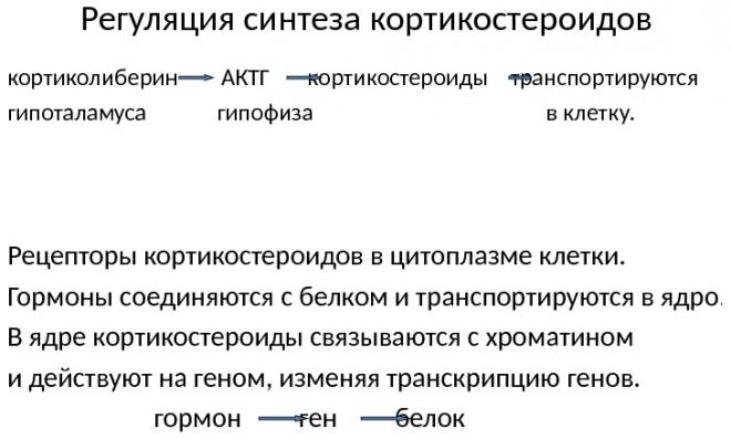 Кортиколиберин АКТГ