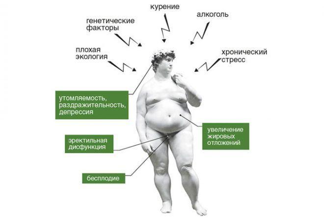Норма гормона тестостерона