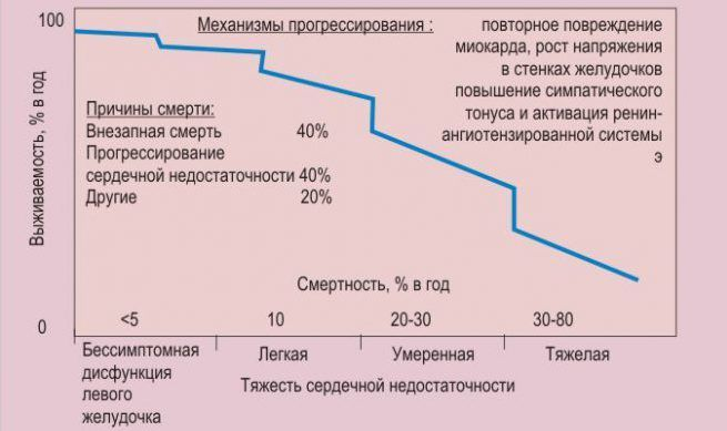 Общие сведения Соматостатина