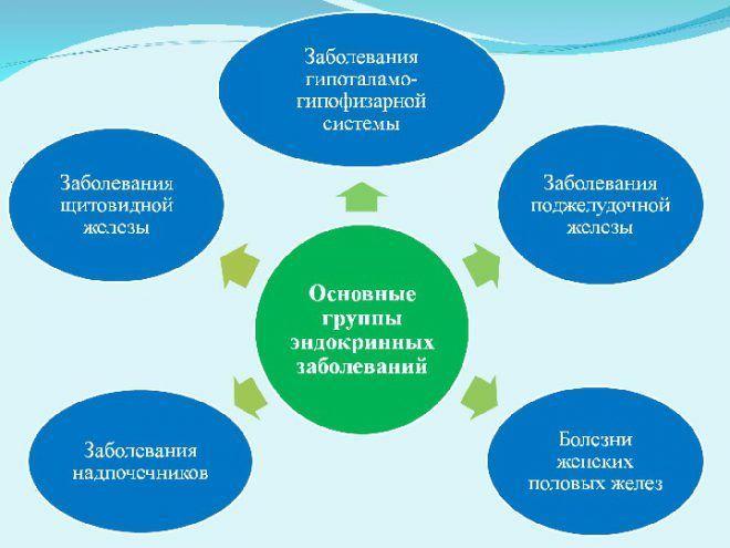 Основные группы эндокринных заболеваний