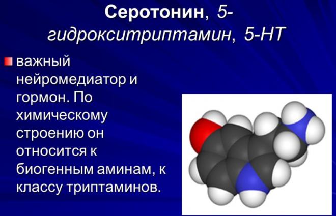 Серотонин нейромедиатор