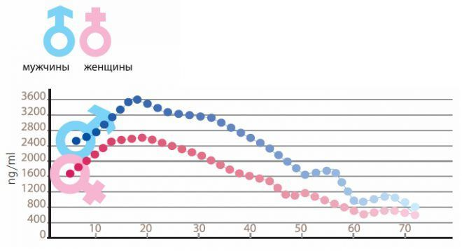 Снижение уровня ДГЭА в крови с возрастом