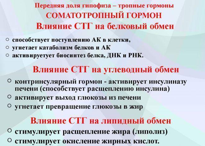 Соматотропный гормон гипофиза