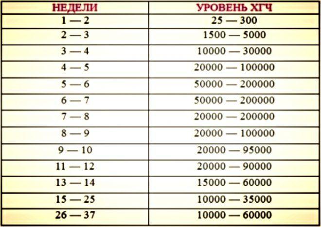 Таблица уровня ХГЧ в норме по неделям беременности