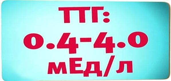 Уровень ТТГ в крови