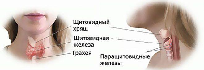 Народные лечение сахарном диабете