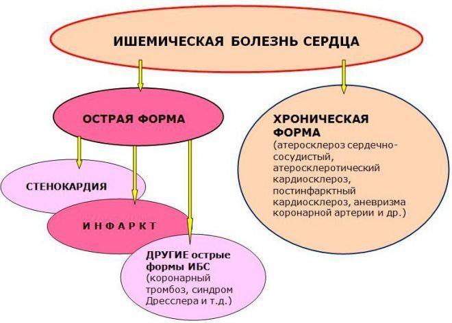 Классификация ишемической болезни сердца