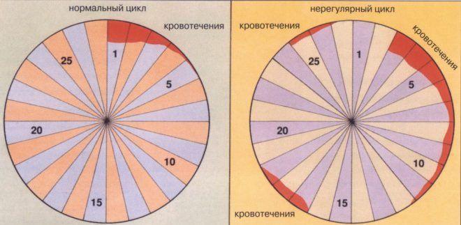 Нарушения менструального цикла у женщин