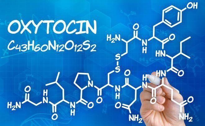 Окситоцин гормон белков