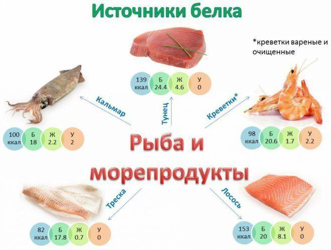 Рыба и морепродукты как источники белков