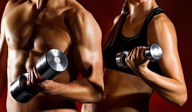 Увеличивают мышечную массу