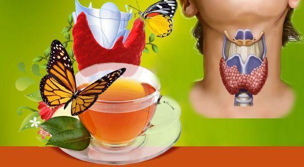 монастырский чай от паразитов рецепт состав