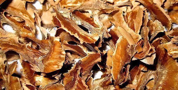 Настойка из перегородок грецких орехов от щитовидки на воде