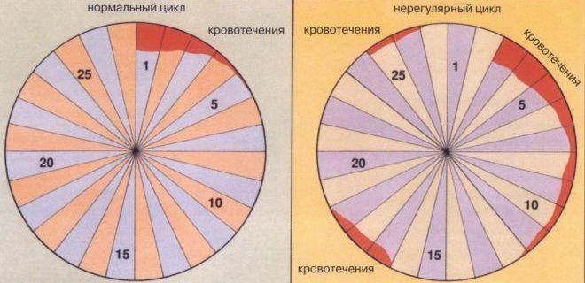 Менструальный цикл нерегулярный
