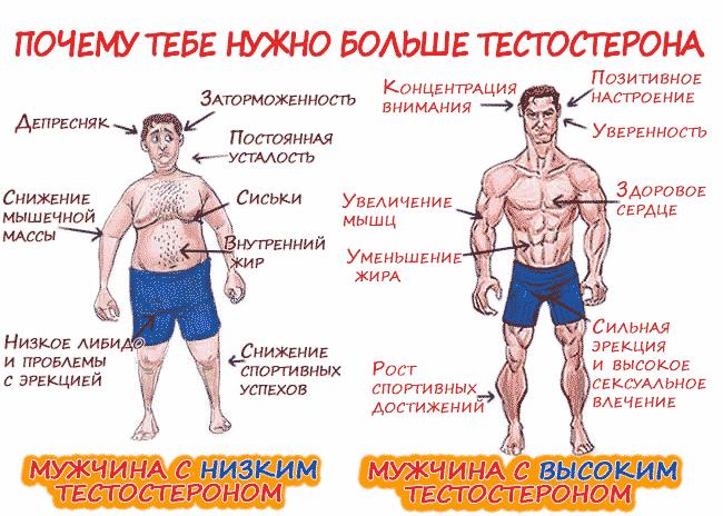 Понижение тестостерона