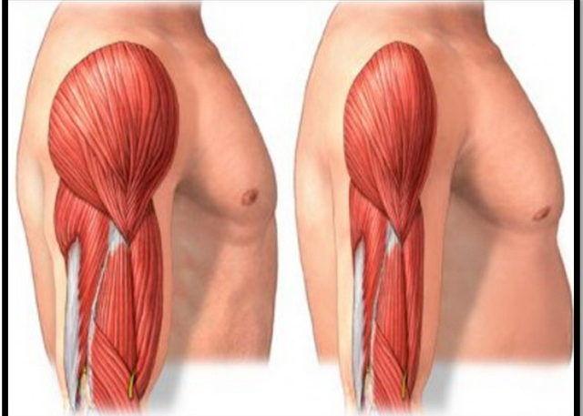 Снижение мышечной массы