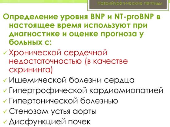 Уровень BPN